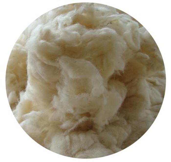 lana-cliente-da-trattare